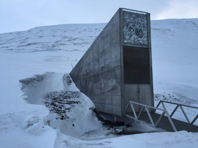 The entrance to the Global Seed Vault in Svalbard (Norway) - the facility is home to duplicate seeds contributed by gene banks worldwide © Agroscope, Michael Gysi