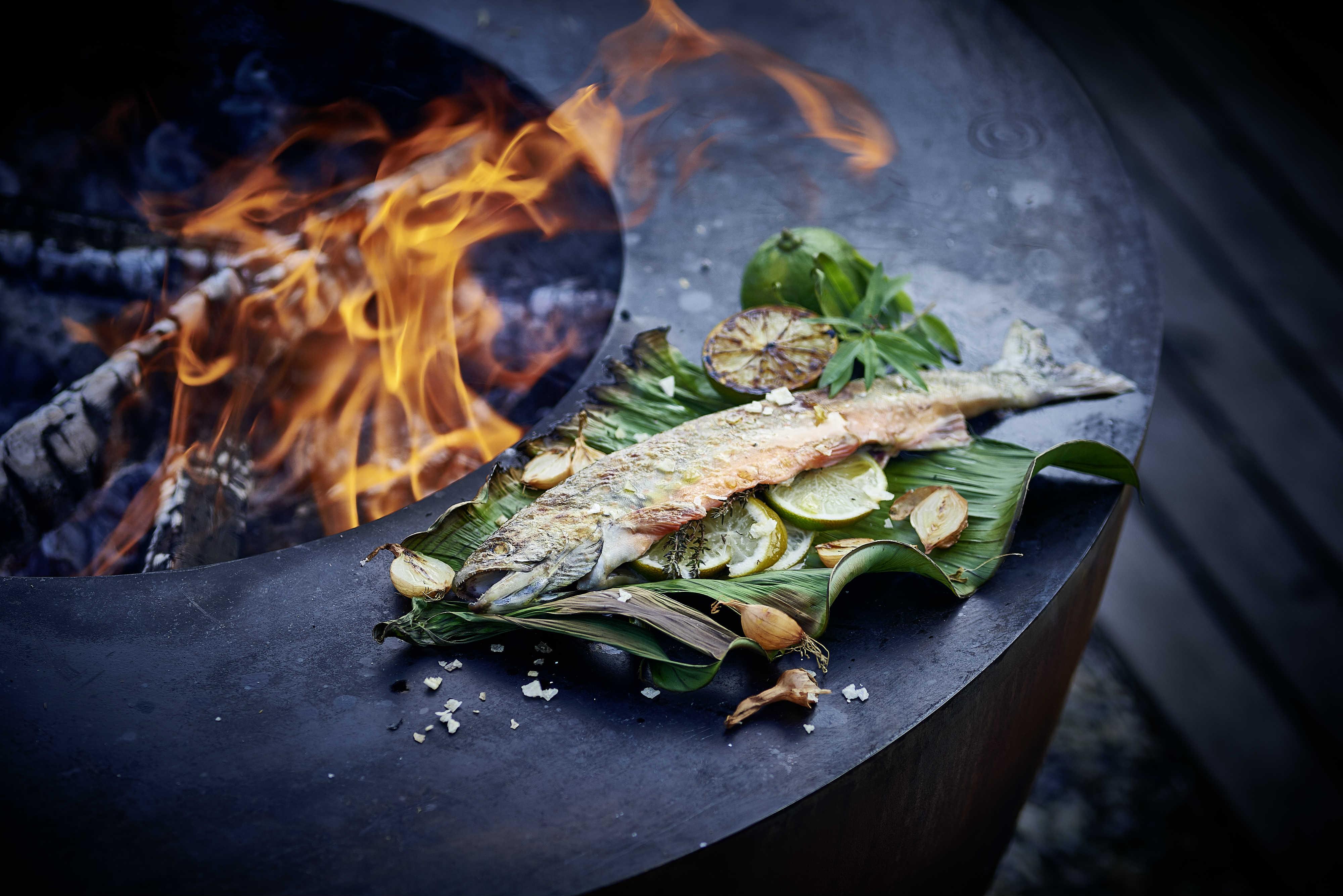 Fish on Feuerring
