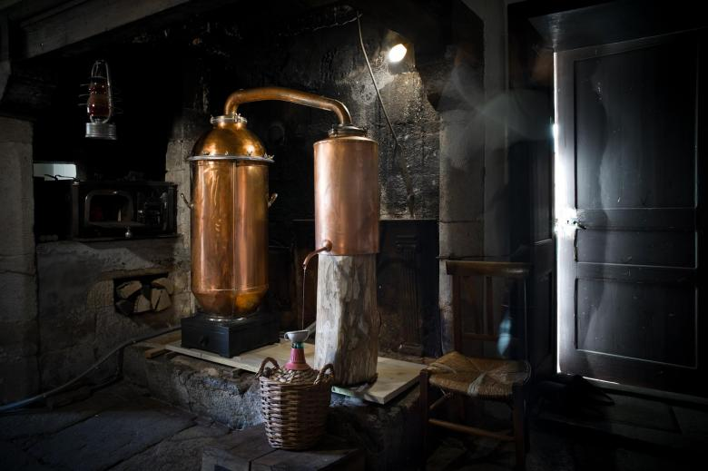 distillation absinthe