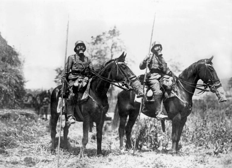 Even the Swiss army wanted to equip its horses with gas masks as the Germans had for their soldiers at the western front in the First World War.