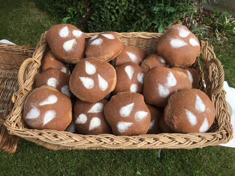 Bread made from the VANILNOIR variety bred by Agroscope for its flavour and dark colour © Carole Parodi Agroscope