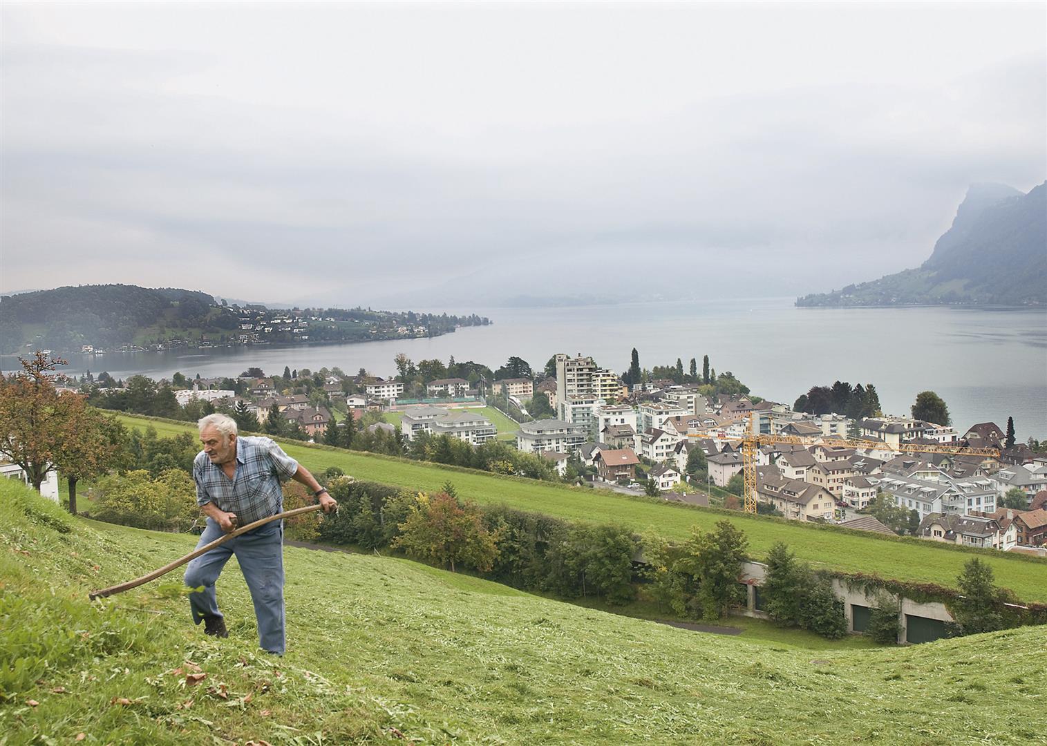 d61b3290be35 Aspectos clave de la protección ambiental en Suiza