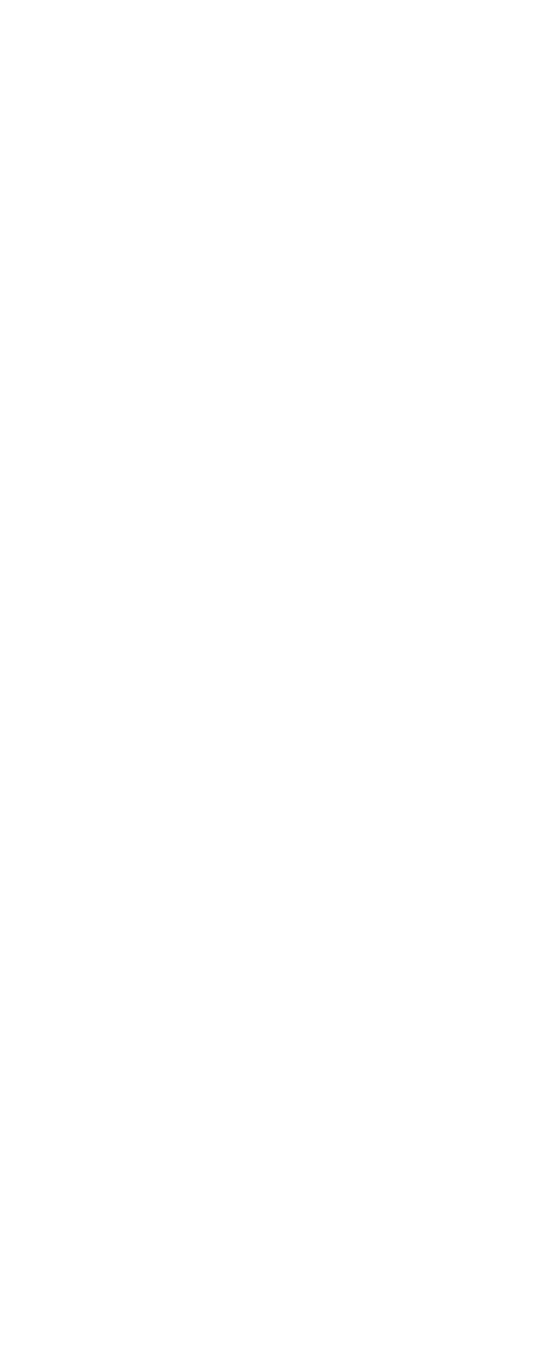 Infographic Carneval