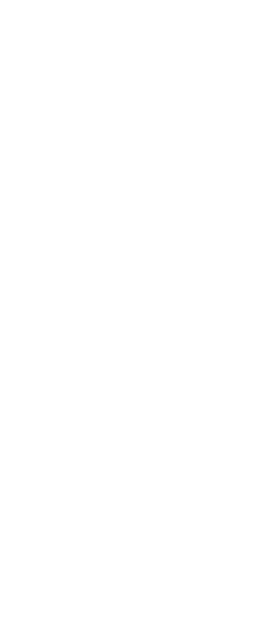 Infographic Swiss celebrations