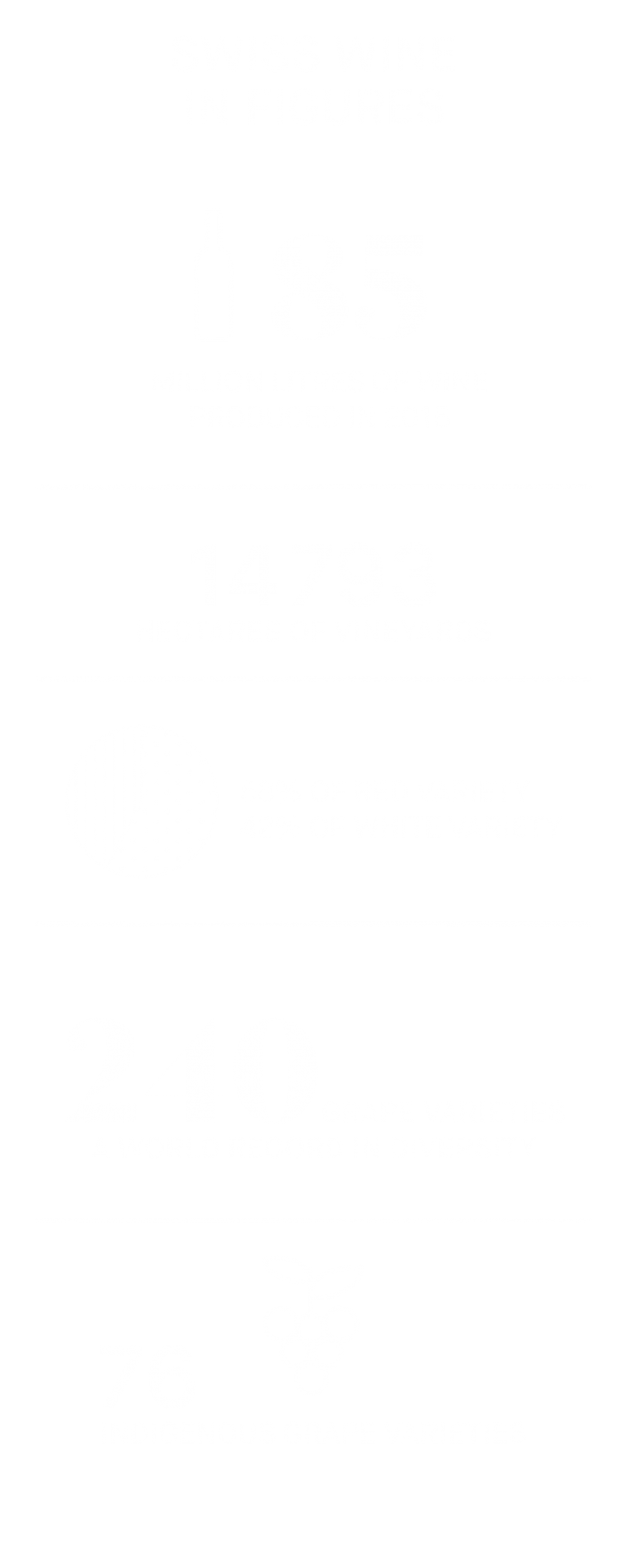 Infographic Swiss Wines