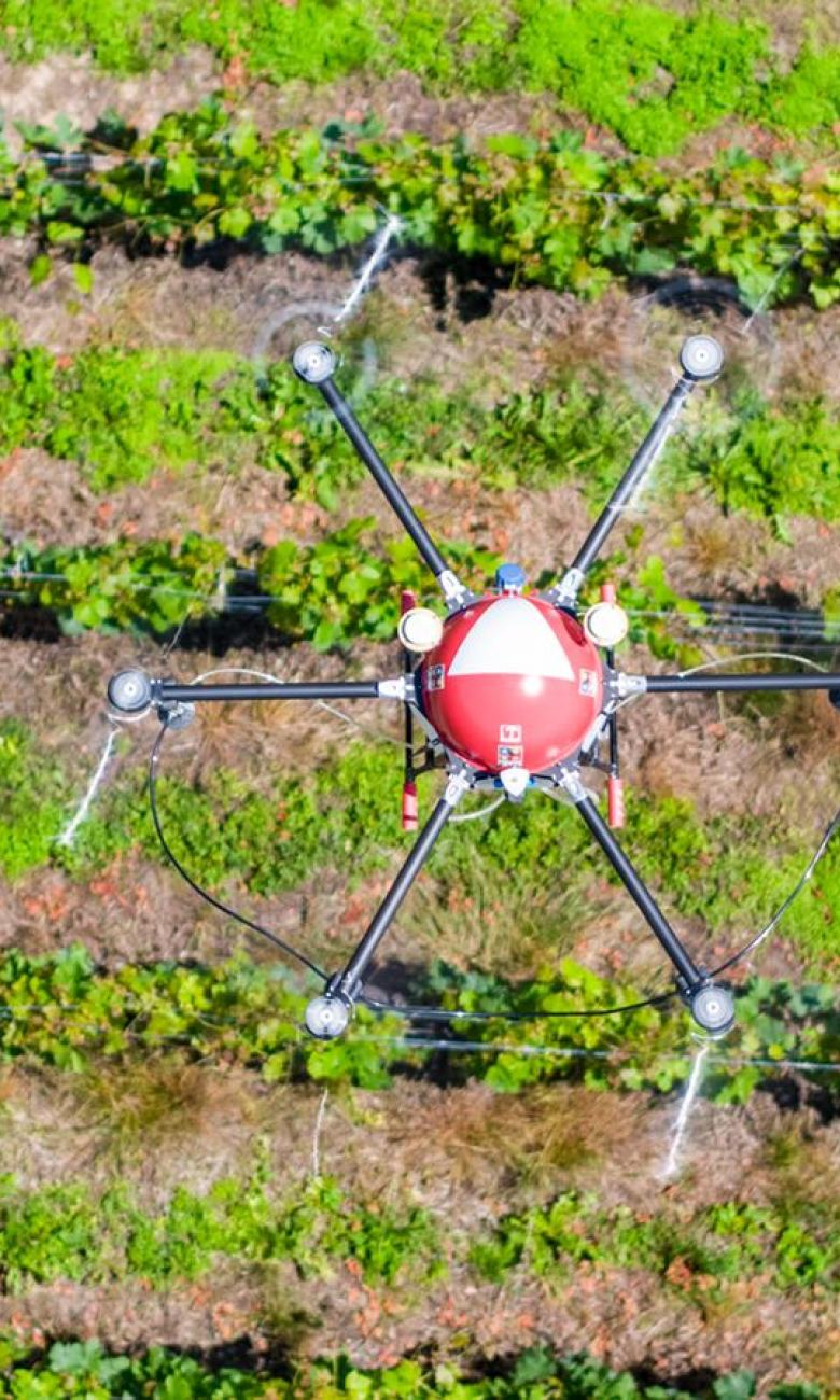 Crop-spraying drone