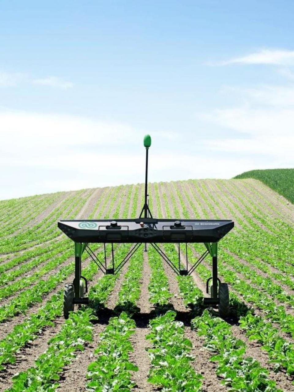 90% less herbicide thanks to the robot's targeted weeding © ecoRobotix