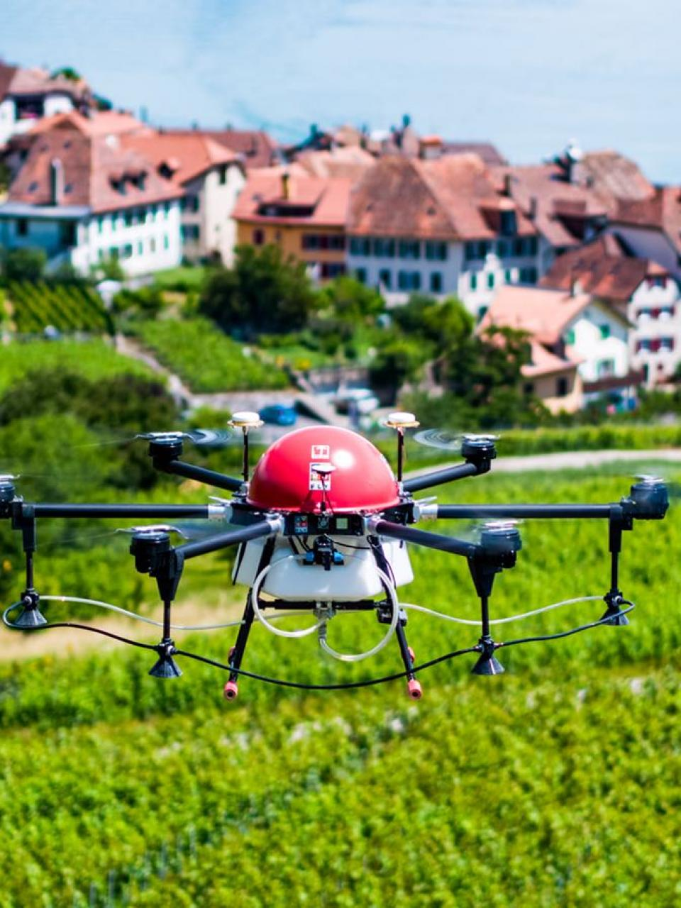 Crop-spraying drone flying above Swiss vineyard